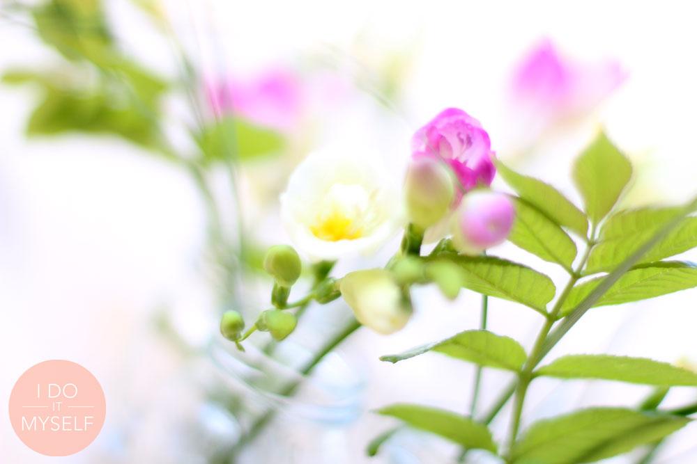 Vase printemps