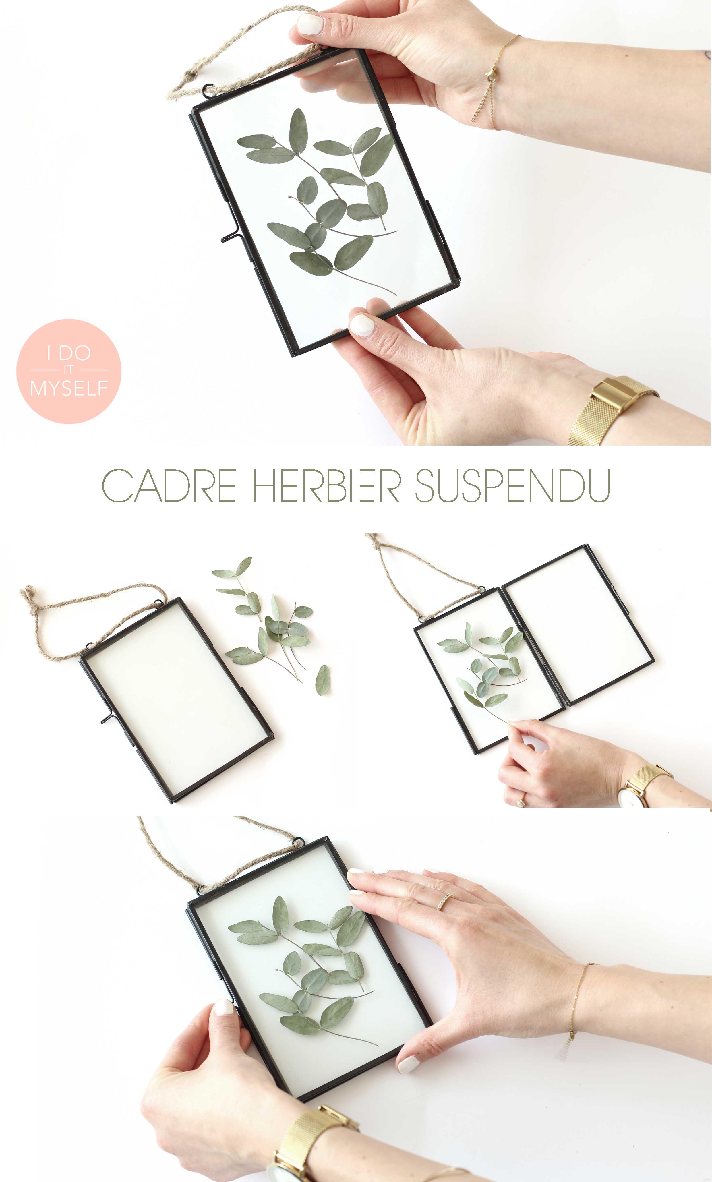 Cadre herbier DIY