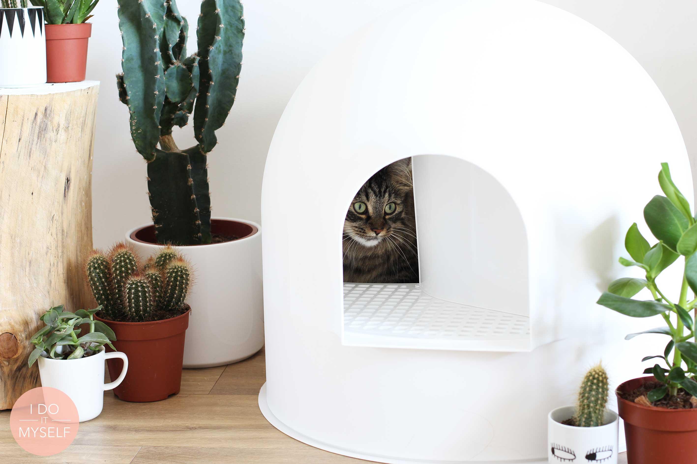 objet design pour animal