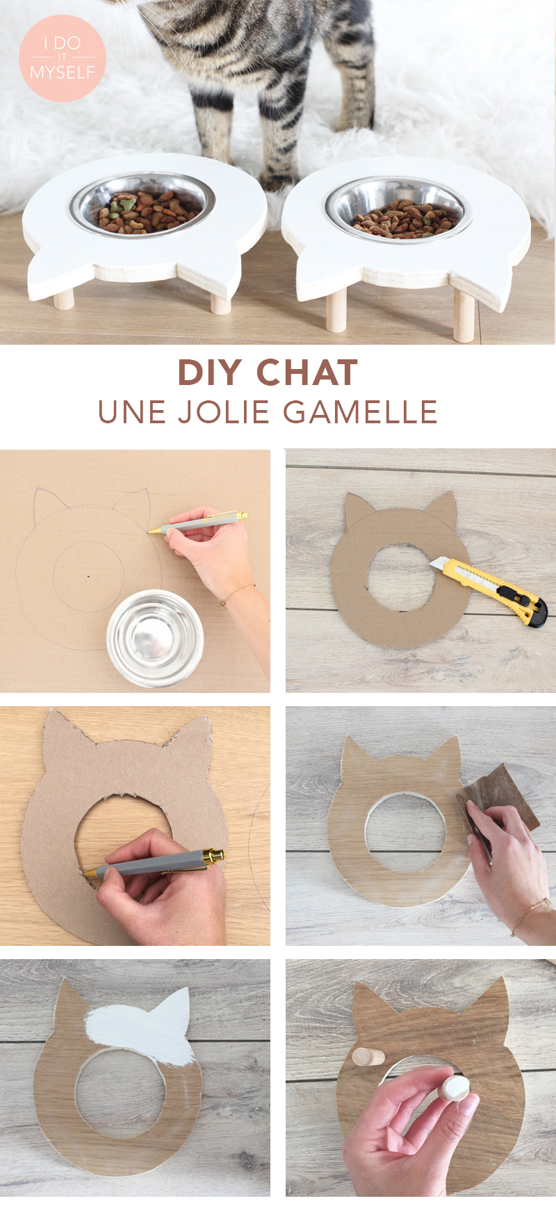 Easy cat DIY