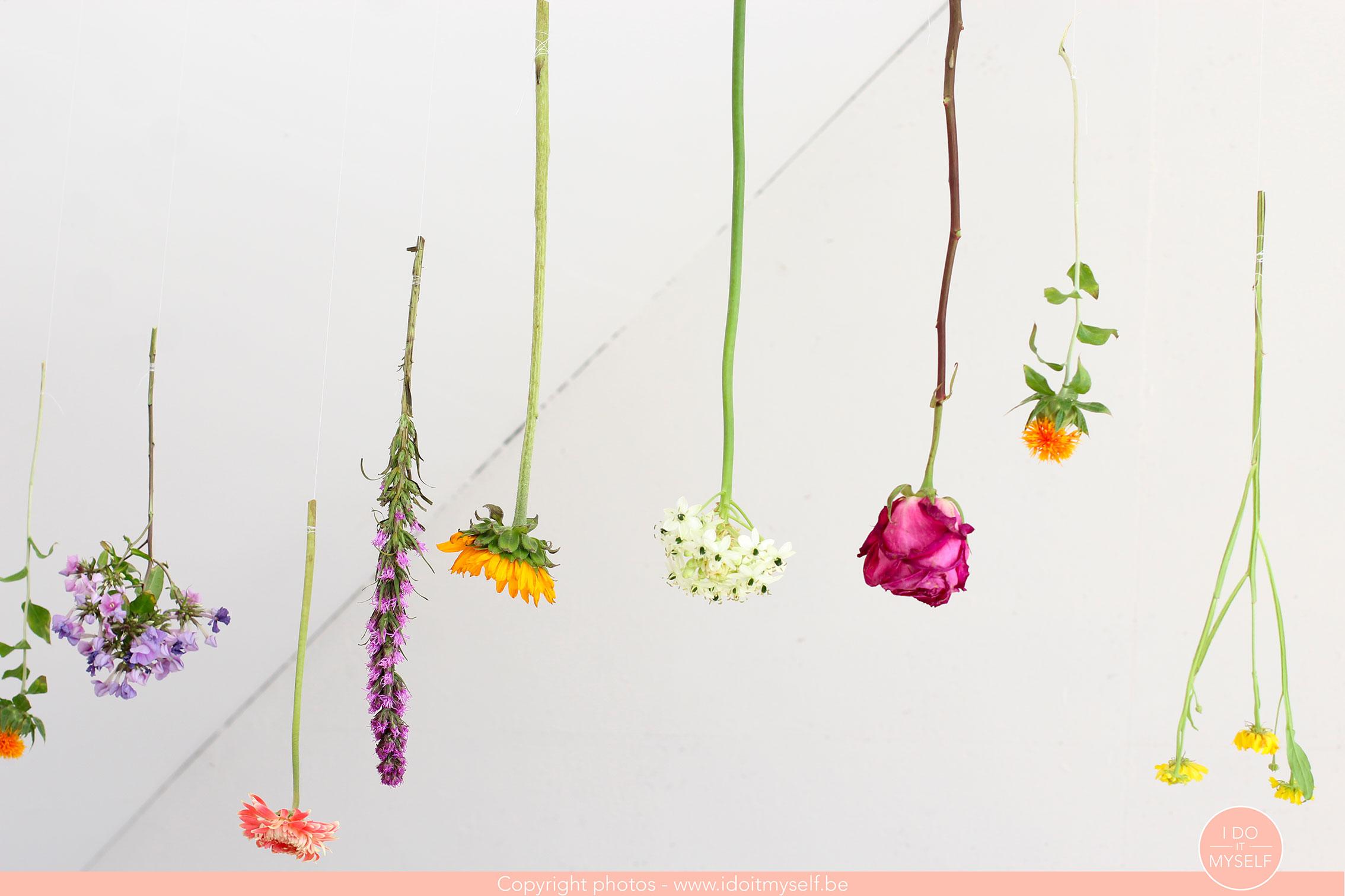 Bloomon fleurs