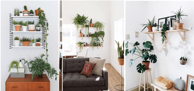 Inspirations : Intégrer des plantes dans son intérieur